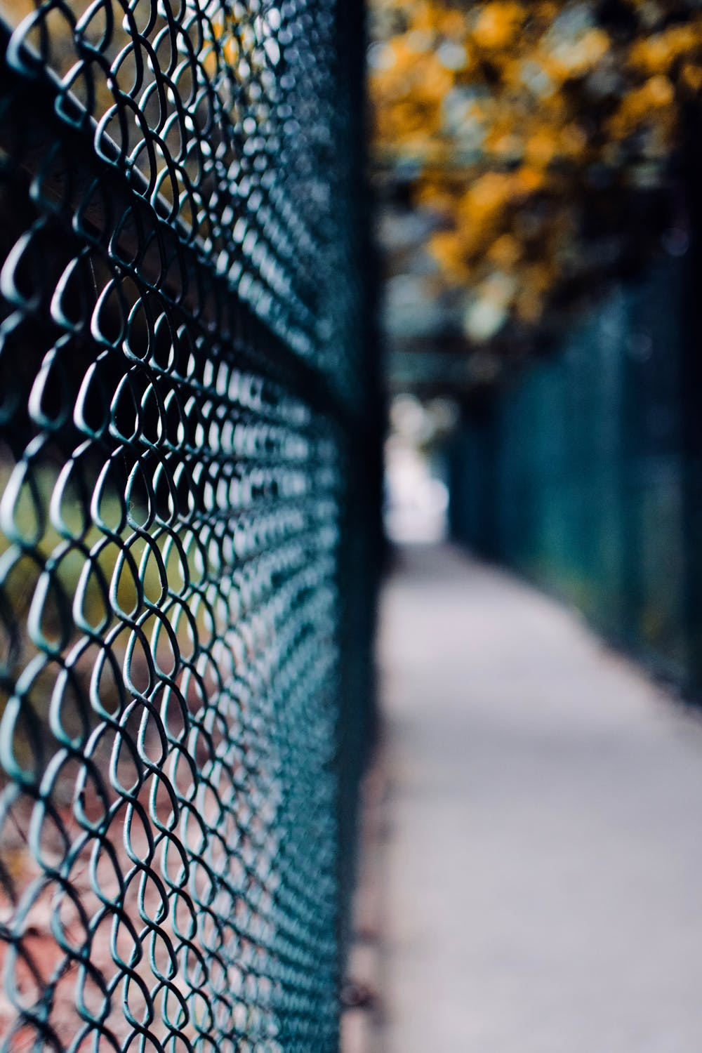 Fence contractor in San Diego